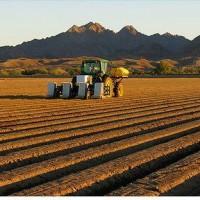 robot-farmers