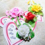 Bông hồng trắng mừng bông hồng đỏ